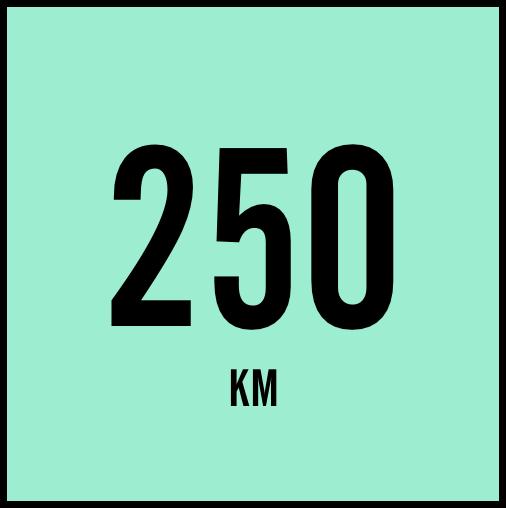 250@2X