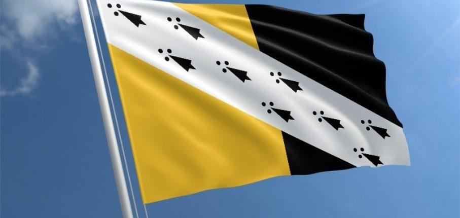 Norfolk Flag Std
