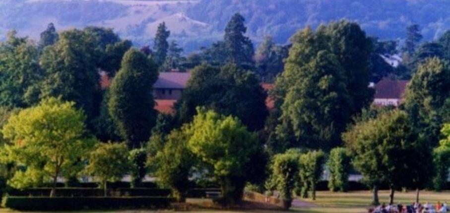 Reigate Priory Park 2