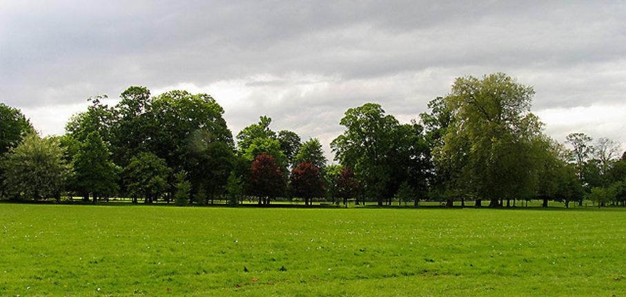 Gunnersbury Park 2