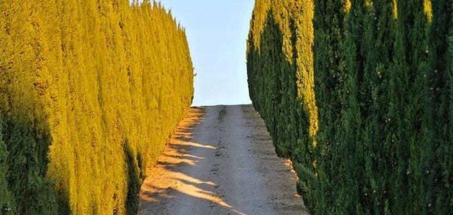 Climb Tuscany