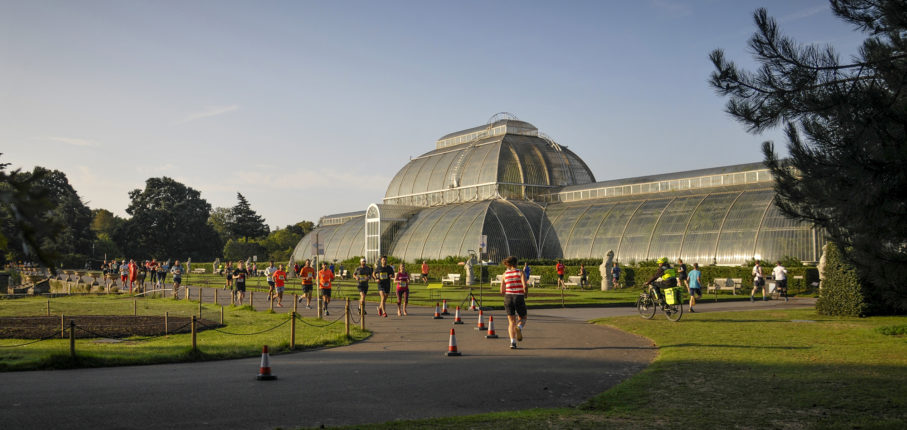 Eventpage Palm House Rgw7306