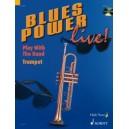 Dechert, Gernot - Blues Power live!