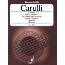 Carulli, Ferdinando - Concerto E minor op. 140