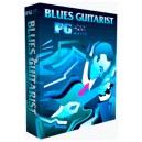 The Blues Guitarist -