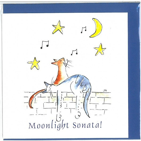 Moonlight Sonata Greetings Card