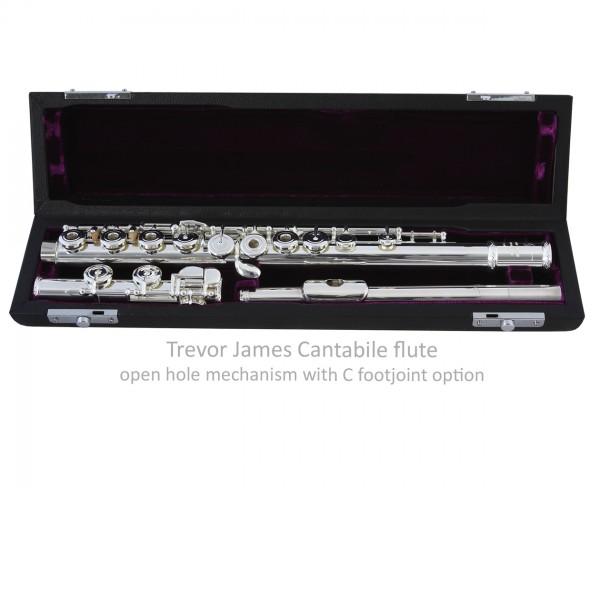Trevor James Cantabile E (Open Hole) Flute Outfit