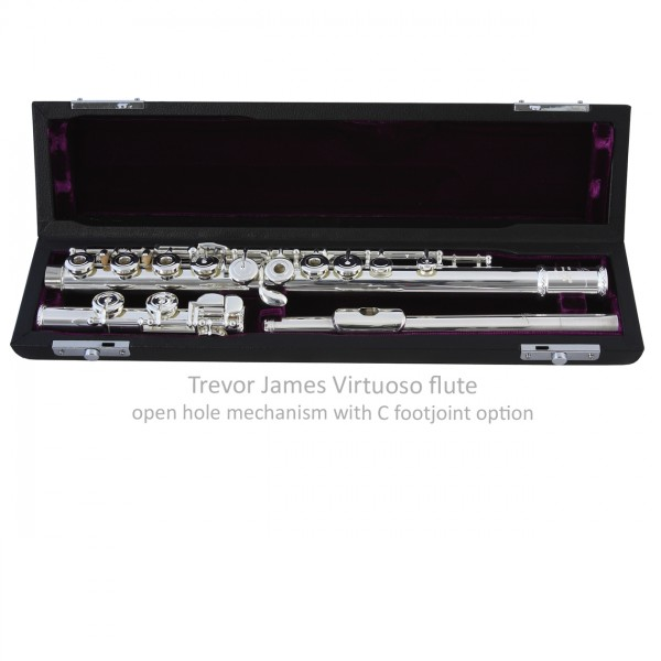 Trevor James Virtuoso (Open Hole) Flute Outfit