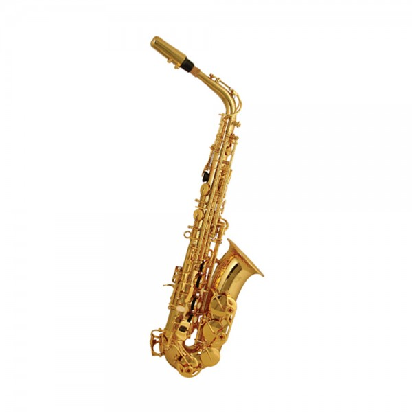 Elkhart 100AS Alto Sax Outfit