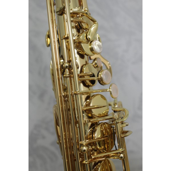 Selmer Series II Super Action 80 Alto Sax Outfit