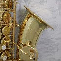 Trevor James Classic II Alto Saxophone Outfit (Gold Lacquer)