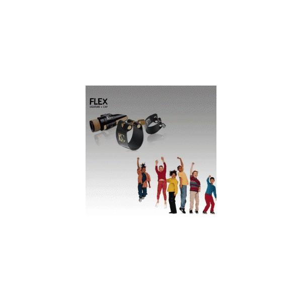 BG France FLEX Ligatures and Caps