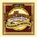 Ernie Ball Earthwood 80/20 Bronze Mandolin Strings