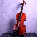 Wessex Violin Co. Model xv Violin