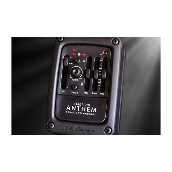 L. R. Baggs Anthem Acoustic Guitar Pickup and Microphone