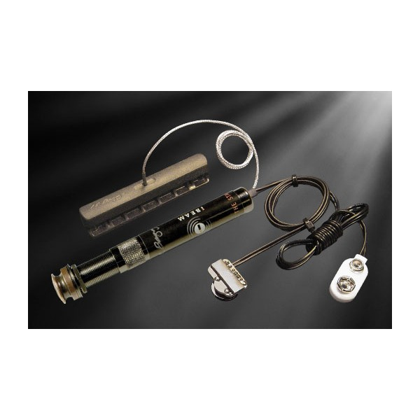 L. R. Baggs I-Beam Active Pickup system