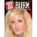 Chart Hits Now! Burn ...Plus 11 More Top Hits