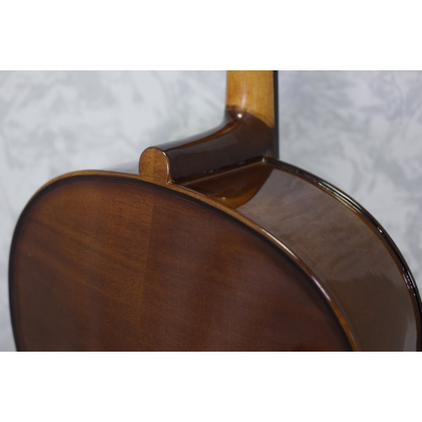 Stentor Student 1 Cello Outfit