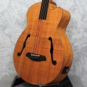 Aria FEB-FL fretless electro-acoustic bass guitar