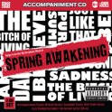 Spring Awakening - Backing Tracks from the Musical - Stage Stars