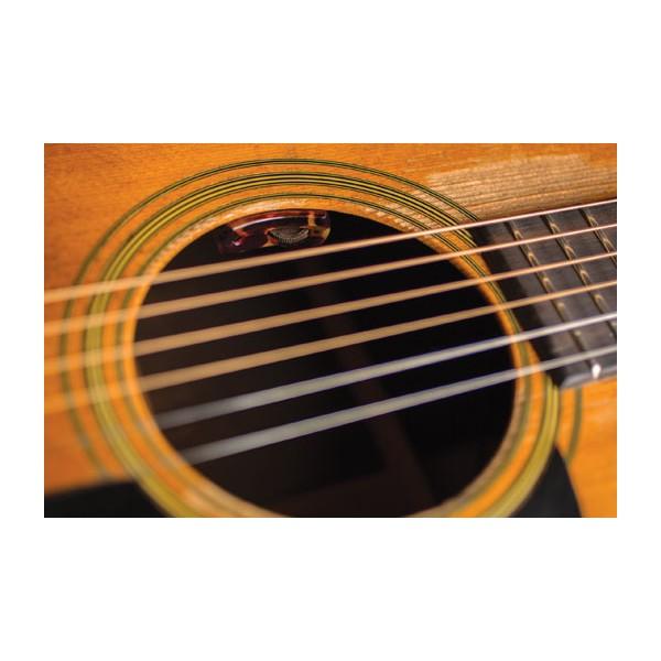 L. R. Baggs Lyric Acoustic Microphone Acoustic Guitar Pickup