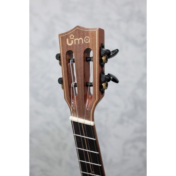 Uma Pulse SC fan fret ukulele
