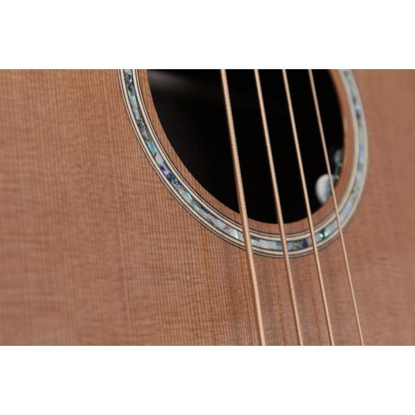 Auden Bowman Acoustic Bass Guitar