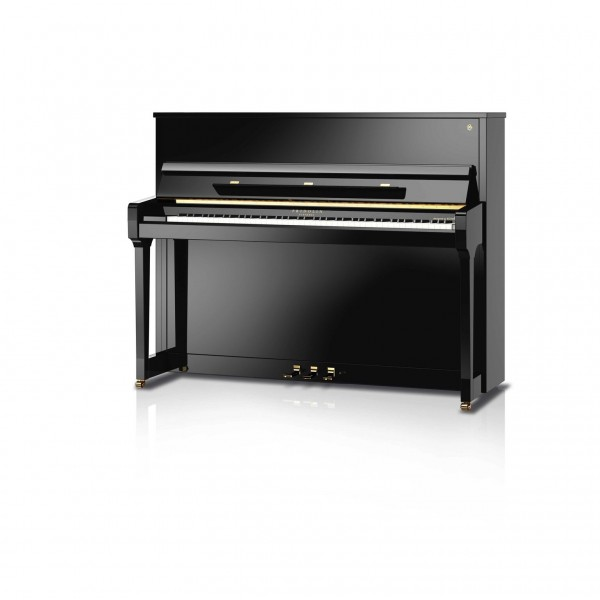 Fridolin F116T Upright Piano with silent system