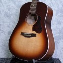 Seagull Entourage Dreadnought Rustic