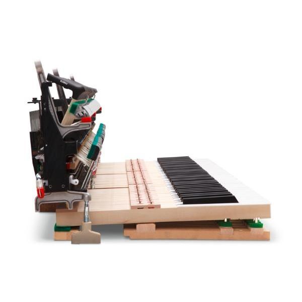 Kawai Novus NV-5 Hybrid Digital Piano