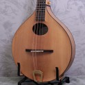 Ashbury All Solid Carved A Style Mandolin