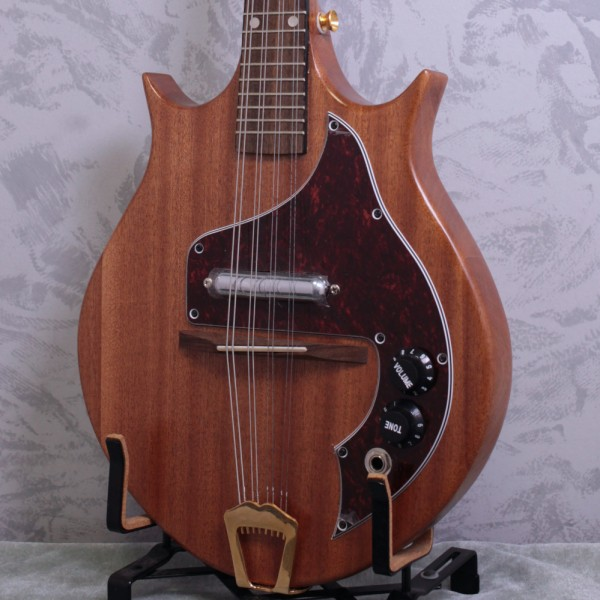 Ashbury Solid Body Electric Mandolin