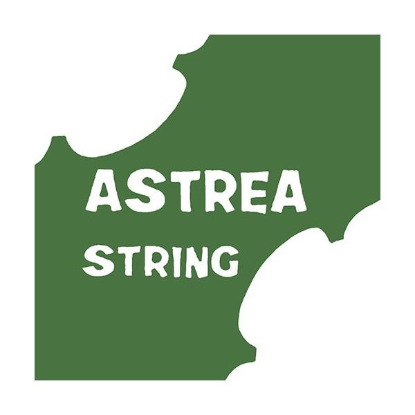 Astrea Violin Strings