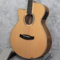 Tanglewood Discovery Super Folk Left Handed