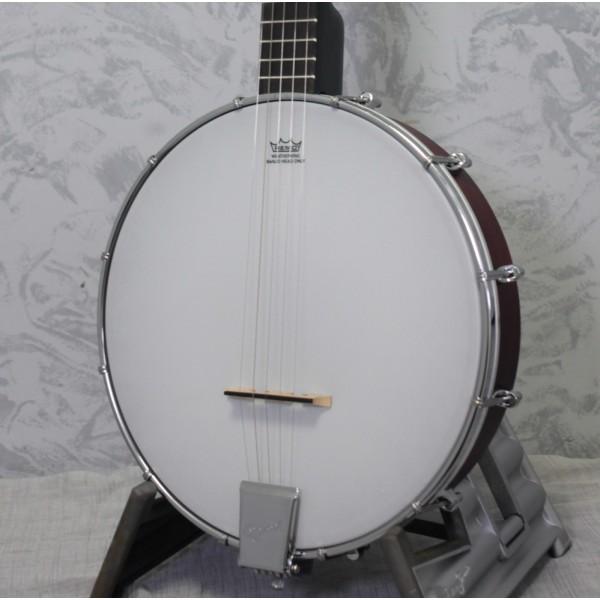 Ozark 2102G Open Back Banjo
