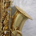 Trevor James SR EVO Alto Sax Outfit (Gold Lacquer)