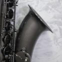 Trevor James Classic II Frosted Black Tenor Sax Outfit