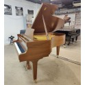 Schimmel 174 in walnut satin