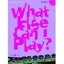 Various - What else can I play? Flute Grade 3