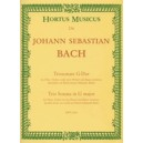 Bach J.S. - Trio Sonata in G (BWV 1038).