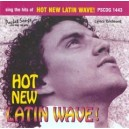 Sing The Hits Of Hot New Latin Wave
