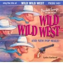 Sing The Hits Of Wild Wild West & New Pop Male