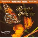 You Sing The Hits: Beautiful Thing