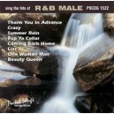 The Hits of R&B (Male)