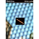 David Gray: White Ladder (PVG)