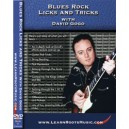 Blues Rock Licks and Tricks With David Gogo