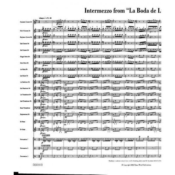 Intermezzo from La Boda de Luis Alonso