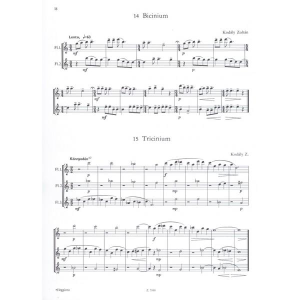 Bartók Béla, Kodály Zoltán - Works By Bartók And Kodály - for flutes and piano