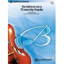 Various - Variations On A Theme By Haydn