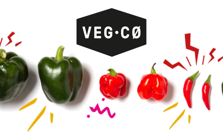 VegCø hero image